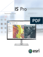 ArcGIS Pro Terminology Guide