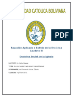 Reacción Aplicado a Bolivia de La Encíclica Laudato Si