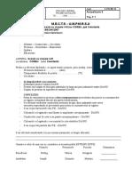 PV- Probe Instalatii Termice Corbu