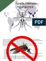 Flip Chart Chikungunya 12 Baruu