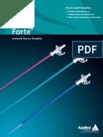 Forte Ureteral Access Sheath