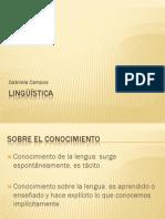 Lenguaje-Lengua-Habla-1