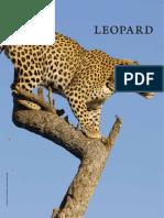 Leopard Layout
