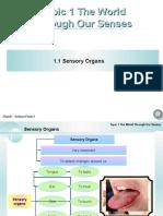 Chapter 1 Sensory Organs