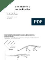 Evolucion de Los Reptiles