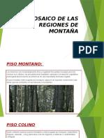 EL-MOSAICO-DE-LAS-REGIONES-DE-MONTAÑA.pptx