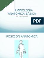 Terminologia Anatomia