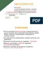 Carbohidratos Walter