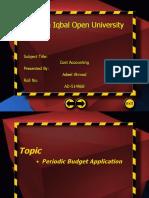 30759974 Periodic Budget Application