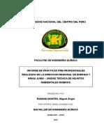 Primer Informe de Practicas Preprofesionales