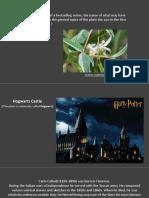 The Hogwarts.pdf