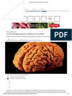 _La Psicoterapia Produce Cambios en El Cerebro