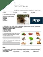 Avaliacao Ciencias-Pralet 2015 Ensin Funs