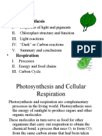 Photosynthesis and Cellular Respiration-0