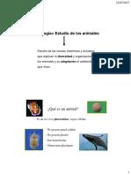 nomenclatura (1)sd