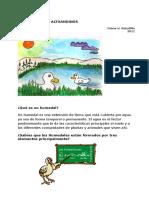 Humedales para niños.docx