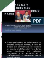 Exposicion PsiqUIATRIA Adulto Mayor