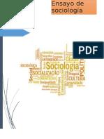 Ensayo de Sociologia II