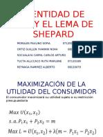 TRABAJO DE MICRO LEMA DE SHEPARD IDENTIDAD DE ROY.pdf