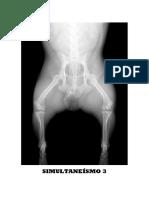 Revista SIMULTANEÍSMO Nº 3 pdf.pdf