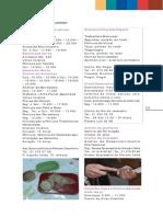 Agenda Julho 2007 Parte 2