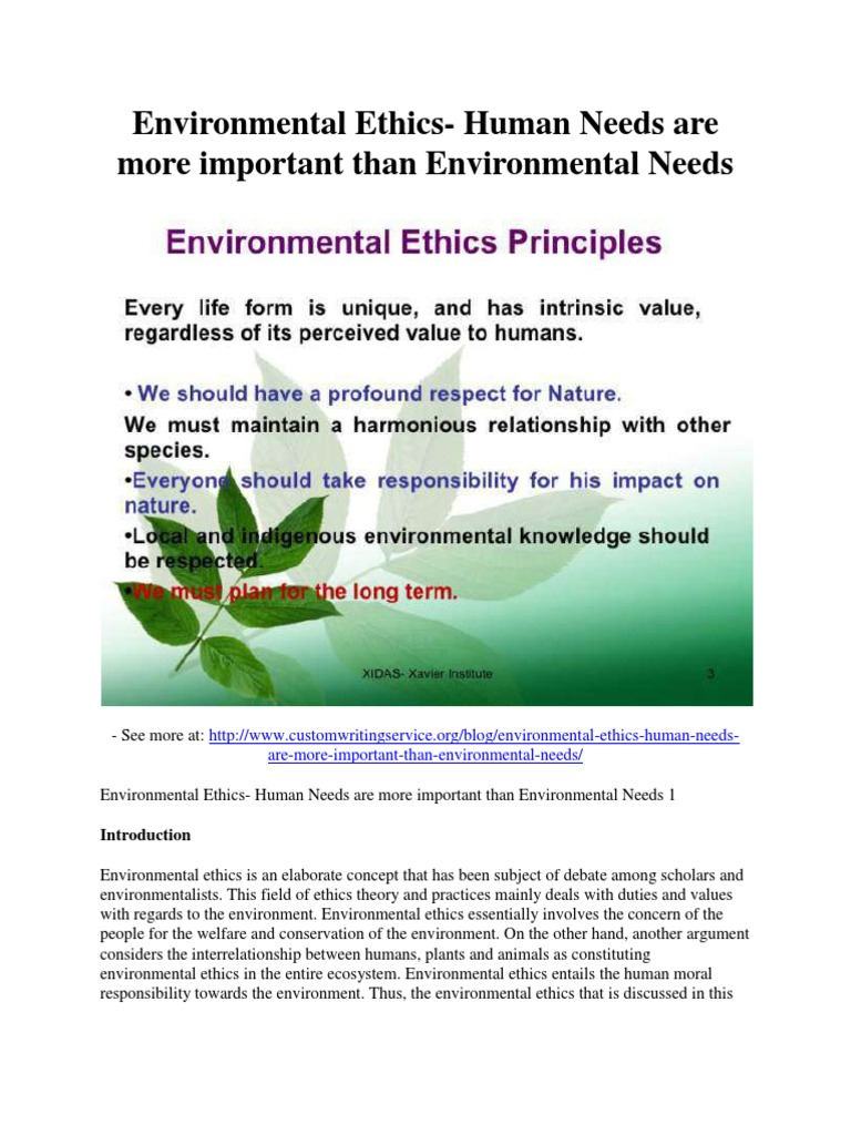 respecting the environment essay Essays - largest database of quality sample essays and research papers on respect for our environment.