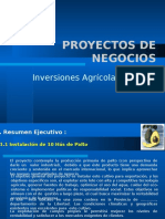 Proyecto Palto LAG