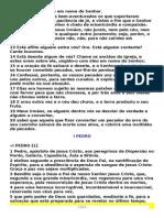 I E II PEDRO ,I ,II E III EPISTOLAS DE JOAO,JUDAS E APOCALIPSE.pdf