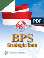 Strategic Data 2011