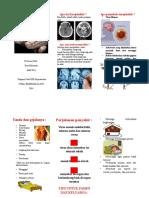 Leaflet Encephalitis
