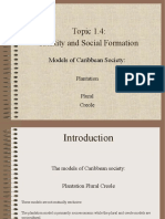 Cape Caribbean Studies - Models of Caribbean Society Notes