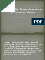 Evaluasi Dan Penatalaksanaan Varikokel Adolesen