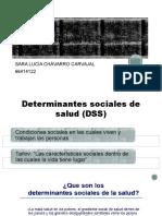 Equidad y Determinantes Sociales de La Salud