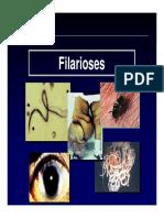 Aula Filarioses Dirofilaria Onchocerca