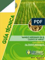 006-a-arroz.pdf