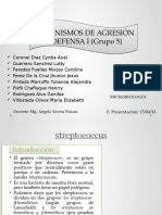 MAD I-microbiología-GRUPO 5-SECCIÓN B-STREPTOCOCCUS.pptx