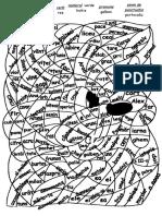 parti_de_vorbire-iepuras.doc