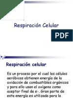 1. Respiracion Celular.