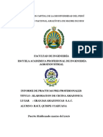 Informe de Practicas Cecicna Autoguardado