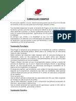 Curriculum Cognitivo (1)