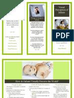 brochure visual perception