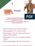 PLEXOS 2