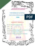 PP2 IQF CHINCHA.docx
