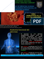 Homeostasis de La Glucosa Sanguinea R.C.G