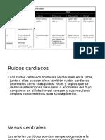 Fundamentos Sistema Circulatorio y Sistema Periferico