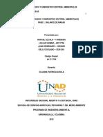 FASE 1 BALANCE DE MASAS (1).pdf