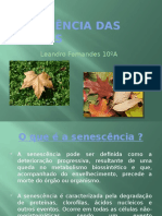 Senescência Das Plantas.pptx