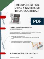 04 Presupuesto Por Areas y Niveles de Responsabilidad (1)
