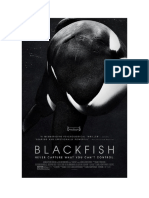 A Special Blackfish Screening at MOMA