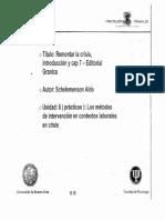 schlemenson - remontar la crisis introduccion cap 7.pdf